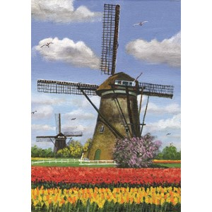 """PuzzelMan (157) - Dirk Graas: """"2 Mills"""" - 99 piezas"""