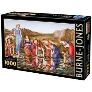 "D-Toys (72733-1) - Edward Burne-Jones: ""The Mirror of Venus, 1875"" - 1000 piezas"