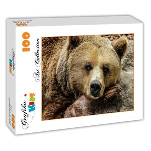 "Grafika Kids (00799) - ""Bear"" - 100 piezas"