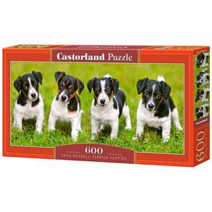 "Castorland (B-060337) - Jack Russell: ""Terrier Puppies"" - 600 piezas"