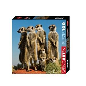 "Heye (29631) - Pete Oxford: ""Meerkats"" - 100 piezas"