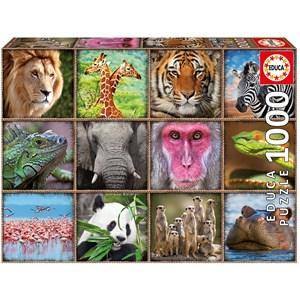 """Educa (17656) - """"Wild animals collage"""" - 1000 piezas"""
