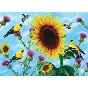 "SunsOut (49038) - Jerry Gadamus: ""Sunflowers and Songbirds"" - 500 piezas"