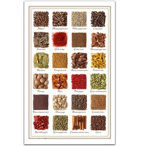 """Pintoo (H1470) - """"Collection of spices"""" - 1000 piezas"""