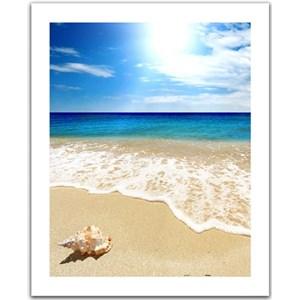 "Pintoo (H1335) - ""Seashell on the beach"" - 500 piezas"