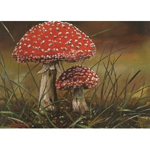 "PuzzelMan (236) - Nico Bulder: ""Mushrooms"" - 99 piezas"