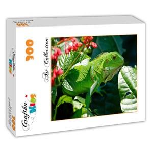 "Grafika Kids (00510) - ""Iguana"" - 300 piezas"