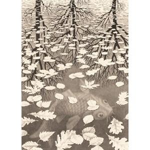 """PuzzelMan (861) - M. C. Escher: """"Three Worlds"""" - 1000 piezas"""