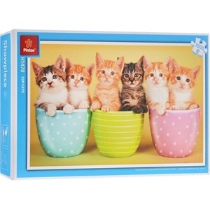 "Pintoo (H1478) - ""Cup cats"" - 1000 piezas"