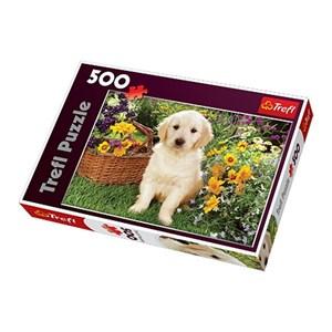 """Trefl (371604) - Greg Cuddiford: """"Labrador Puppy in the Garden"""" - 500 piezas"""
