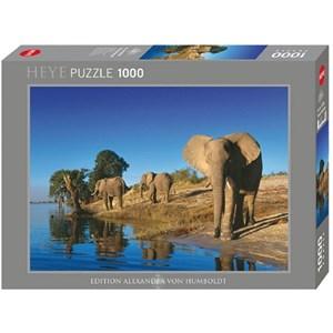"""Heye (29595) - Alexander von Humboldt: """"Thirsty Elephants"""" - 1000 piezas"""