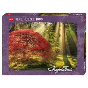 "Heye (29855) - Aaron Reed: ""Guiding Light"" - 1000 piezas"