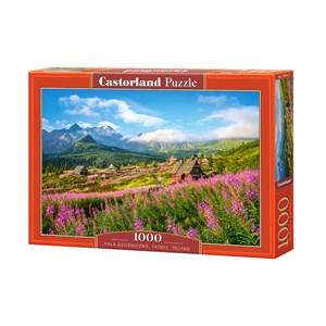 """Castorland (C-104512) - """"Hala Gasienicowa, Tatras, Poland"""" - 1000 piezas"""