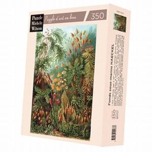 """Puzzle Michele Wilson (A736-350) - Ernst Haeckel: """"Ernst Haeckel"""" - 350 piezas"""