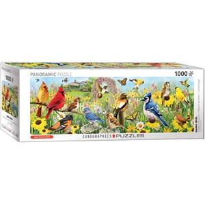 """Eurographics (6010-5338) - Greg Giordano: """"Garden Birds"""" - 1000 piezas"""