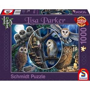 """Schmidt Spiele (59667) - Lisa Parker: """"Mysterious Owls"""" - 1000 piezas"""
