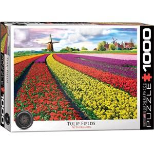 "Eurographics (6000-5326) - ""Tulip Field, Netherlands"" - 1000 piezas"
