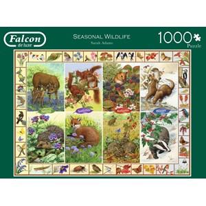 """Falcon (11200) - Sarah Adams: """"Seasonal Wildlife"""" - 1000 piezas"""