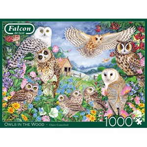 """Falcon (11286) - Claire Comerford: """"Owls in the Wood"""" - 1000 piezas"""