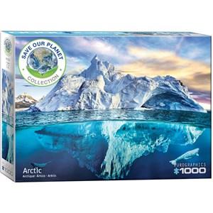 """Eurographics (6000-5539) - """"Arctic"""" - 1000 piezas"""