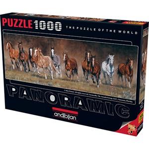 """Anatolian (1010) - Kim Penner: """"Horses"""" - 1000 piezas"""