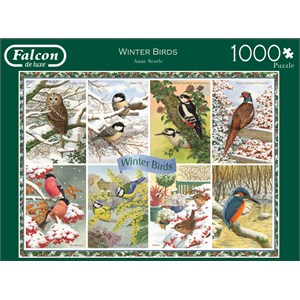"Falcon (11234) - Anne Searle: ""Winter Birds"" - 1000 piezas"