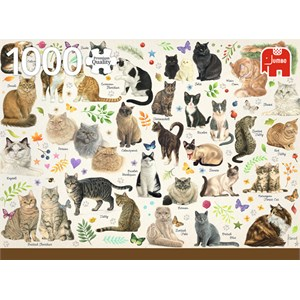 """Jumbo (18595) - Francien van Westering: """"Cats Poster"""" - 1000 piezas"""