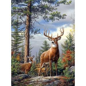 "Buffalo Games (11155) - Hautman Brothers: ""Standing Proud"" - 1000 piezas"
