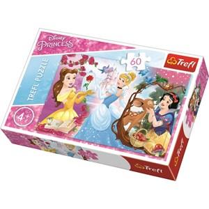 "Trefl (17315) - ""Disney Princess"" - 60 piezas"