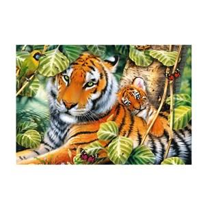 """Trefl (26159) - """"Two Tigers"""" - 1500 piezas"""