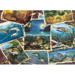 "Cobble Hill (80209) - Jon Q. Wright: ""Fish Pics"" - 1000 piezas"