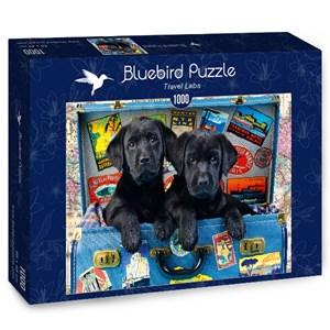 "Bluebird Puzzle (70328) - Greg Cuddiford: ""Travel Labs"" - 1000 piezas"