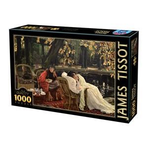 """D-Toys (75079) - James Tissot: """"A Convalescent"""" - 1000 piezas"""