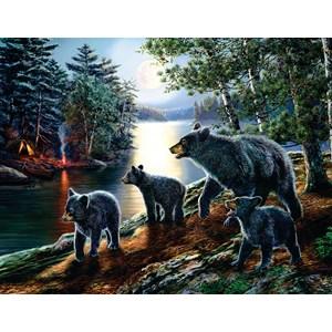 """SunsOut (28368) - James Meger: """"Bear Moon"""" - 1000 piezas"""