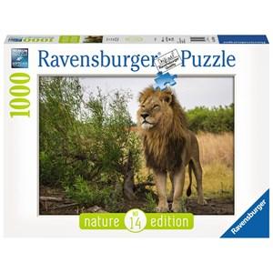 """Ravensburger (15160) - """"Proud lion"""" - 1000 piezas"""