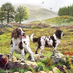 "Otter House Puzzle (74132) - ""Spaniels On The Moor"" - 1000 piezas"