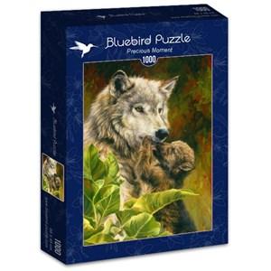 "Bluebird Puzzle (70086) - Lucie Bilodeau: ""Precious Moment"" - 1000 piezas"