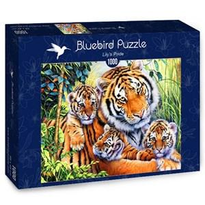 "Bluebird Puzzle (70080) - Jenny Newland: ""Lily's Pride"" - 1000 piezas"