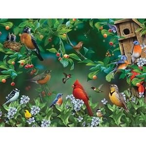 "SunsOut (49054) - Jerry Gadamus: ""Bird Festival"" - 1000 piezas"
