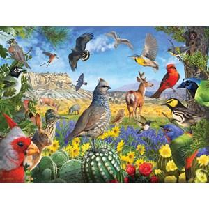 """SunsOut (70939) - R. Christopher Vest: """"Texas Birds"""" - 1000 piezas"""