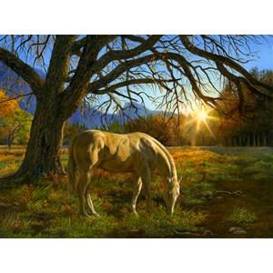 "SunsOut (26294) - Karla Mann: ""Pastoral Sunset"" - 1000 piezas"