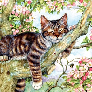 "SunsOut (50423) - Debbie Cook: ""Sleepy Cat"" - 500 piezas"
