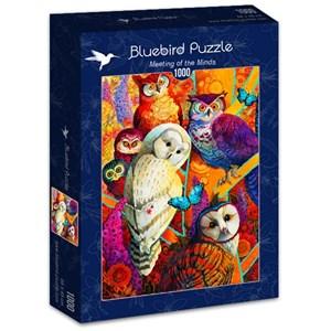 "Bluebird Puzzle (70279) - David Galchutt: ""Meeting of the Minds"" - 1000 piezas"