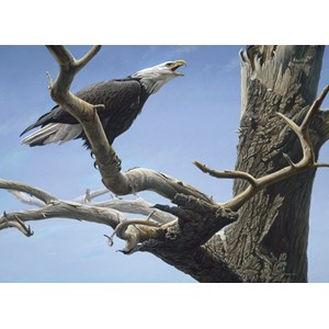 "Cobble Hill (85059) - Robert Bateman: ""Call of the Wild"" - 500 piezas"