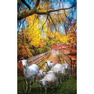 """SunsOut (30136) - Celebrate Life Gallery: """"Sheep Crossing"""" - 550 piezas"""