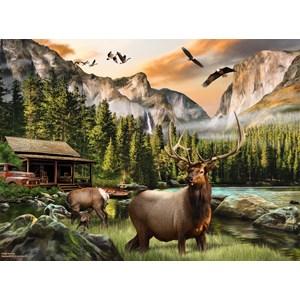 """SunsOut (49004) - Nigel Hemming: """"Elk Country"""" - 1000 piezas"""