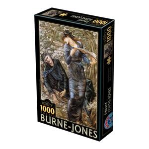 "D-Toys (75024) - Edward Burne-Jones: ""The Beguiling of Merlin, 1872-1877"" - 1000 piezas"