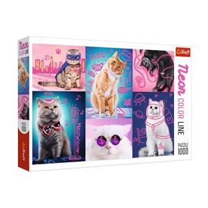 """Trefl (10581) - """"Cats"""" - 1000 piezas"""