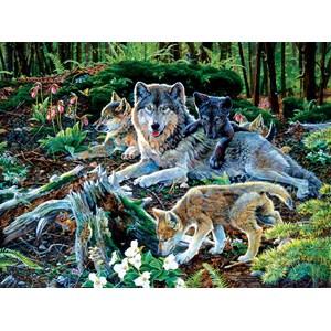 "SunsOut (60506) - Jan Martin McGuire: ""Forest Wolf Family"" - 500 piezas"