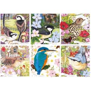 "Otter House Puzzle (75079) - ""RSPB, Garden Birds"" - 1000 piezas"